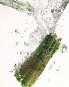 Bundle of green asparagus immersed in water