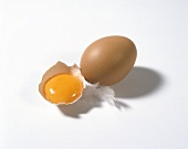A whole hen's egg and egg yolk in bowl with feather