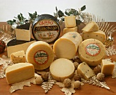 Various types of cheese from Spain and S. America
