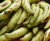 Platanos (cooking bananas) at a market in Venezuela
