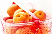Apricots in plastic punnet