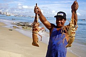 Freshly caught lobster on shore at Fortaleza, Brazil