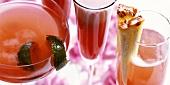 Cocktails: Michelangelo, Tiziano und Sparkling Mary Pickford