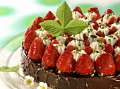Strawberry chocolate gateau