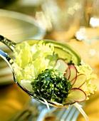 Frühlingssalat mit Radieschen und Schnittlauch-Käse-Bällchen