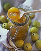 Greengage jam in preserving jar