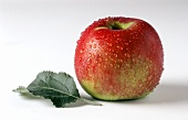 One Ahra apple and leaf