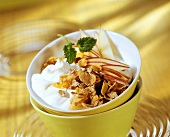 Yoghurt muesli with apple wedges and cereals