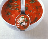Fruity tomato soup with rice