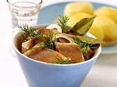 Matje herring snacks with dill in bowl, boiled potatoes behind