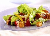 Romaine lettuce with vegetables and croutons