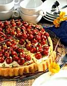 Mascarpone cake with cherries