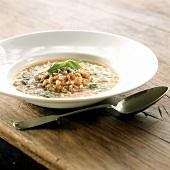 Zuppa di grano (wheat and spring onion soup, Italy)