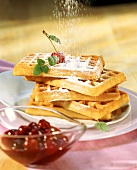 Vanilla waffles with cherry compote and icing sugar