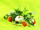 Rocket salad with goat's cheese, cherry tomatoes & pine nuts