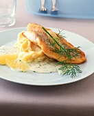 Redfish fillet with lemon and dill sauce and mashed potato