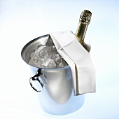 Bottle of champagne in champagne cooler with ice cubes