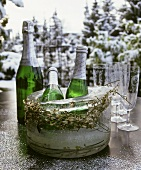 Piccolo, champagne bottle & glasses against wintry landscape