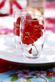 Two glasses with flower design on white plate