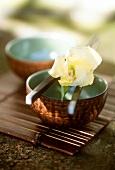 Schälchen mit Essstäbchen und Blume