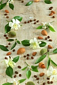 Orange and almond blossom, coffee beans and almonds