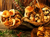 Two baskets of assorted mushrooms