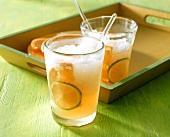 Ginger Beer (Alkoholfreie Ingwer-Limetten-Limonade)