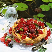 Sommerlicher Obstkuchen