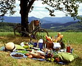 Plentiful picnic in a meadow