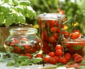 Bottling cherry tomatoes with basil