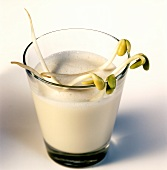 Soya milk in glass with fresh soya sprouts
