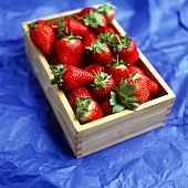 Strawberries in a wooden box on blue background