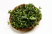 Salad leaves in a wicker bowl
