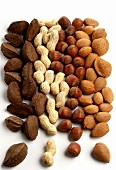 Brazil nuts, peanuts, hazelnuts and almonds