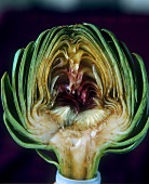 Artichoke in cross section