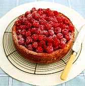 Raspberry flan on cake rack