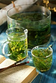 Magic potions with herbs for witch's party