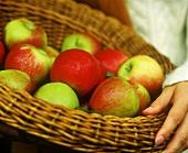 Various types of apples in basket