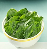 Large spinach leaves in a dish
