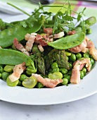 Green pulse salad with green asparagus and strips of bacon