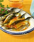 Sarde marinate allo zafferano (Sardines in saffron vinaigrette)
