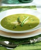 Creamed green asparagus soup