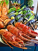 Fish buffet: lobster, mussels, shrimps and sea bream