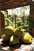 Fresh coconuts (San Salvador de Bahía, Brazil)