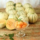 Charentais melons (Cucumis melo var. cantalupensis)