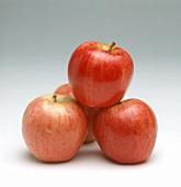 Elstar apples (Malus domestica)