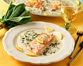 Salmon fillet on sorrel and cream sauce