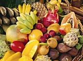 Korb mit exotischen Früchten