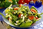 Mixed salad leaves with cheese and tomatoes
