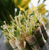 Asian vegetable rolls with enoki mushrooms